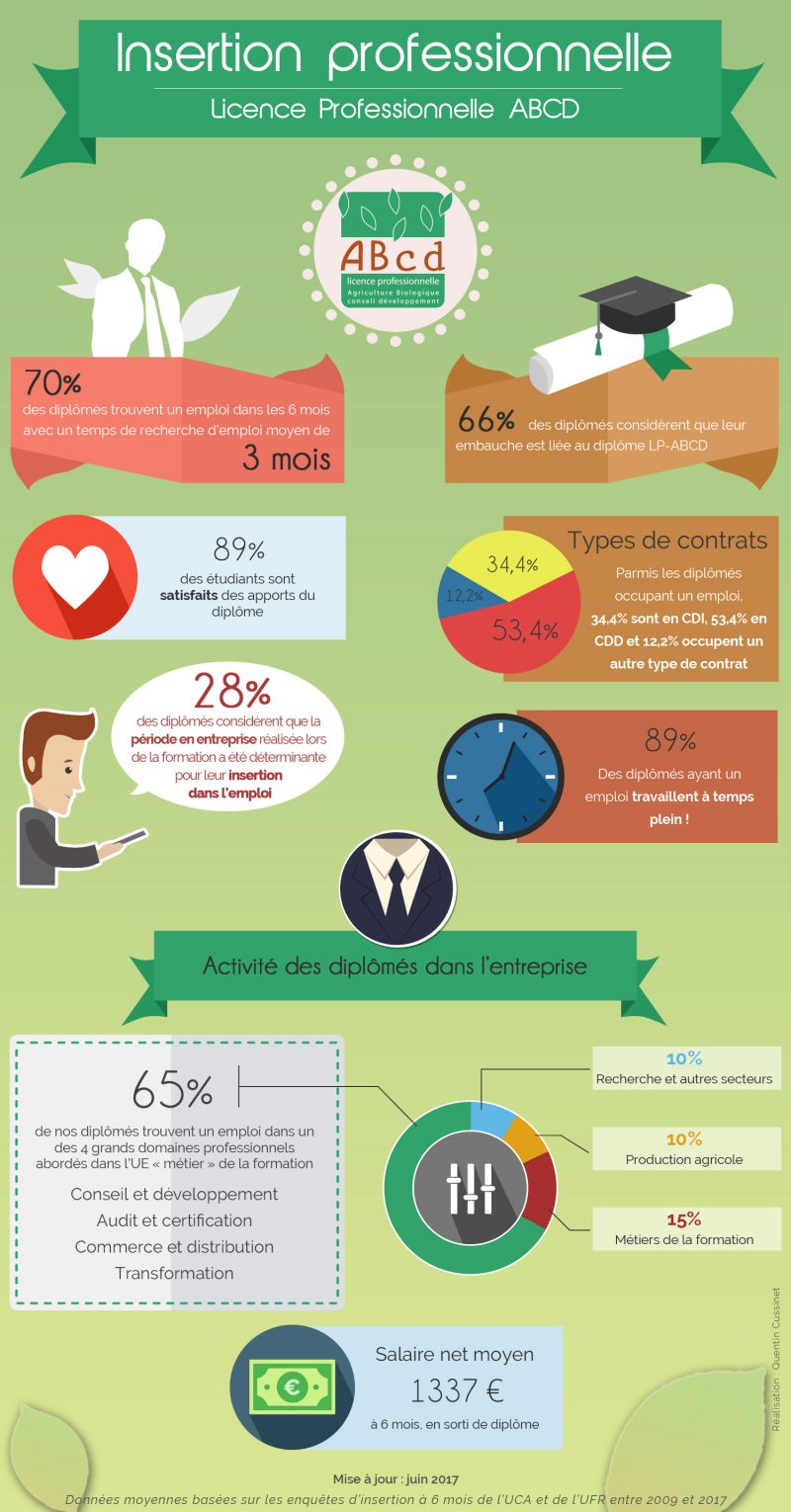 infographie insertion v3