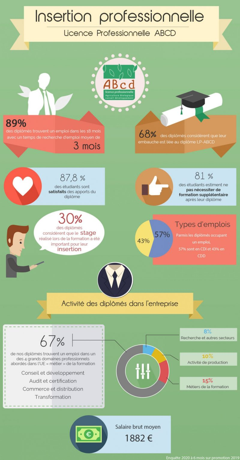 infographie insertion
